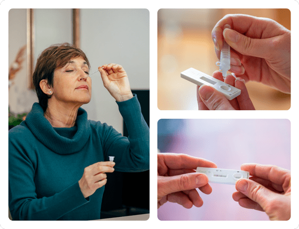 rapid covid test easy to use shallow nasal swab
